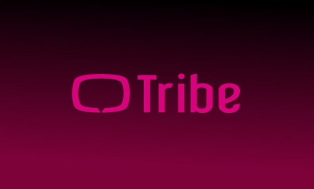 Tribe 630x380 » 5 Pilihan Aplikasi Android Terbaik Untuk Nonton Drama Korea